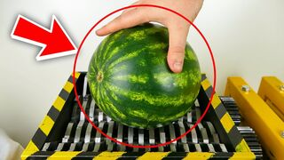 SHREDDING WATERMELON and Other Vegetables !! - THE SHREDDER SHOW - EXPERIMENT AT HOME
