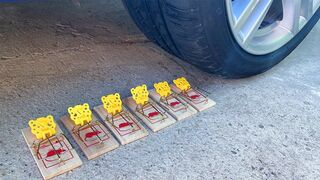 Experiment Car vs Mousetrap! Crushing Crunchy & Soft Things by Car