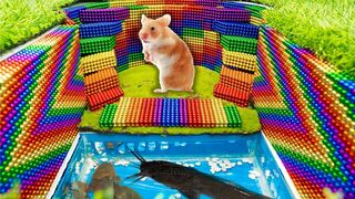 Build Underground House Swimming Pool For Hamster And Catfish With Magnetic Balls (Satisfying)