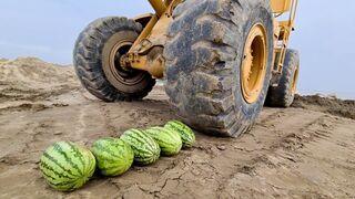 Experiment: Watermelons vs Caterpillar