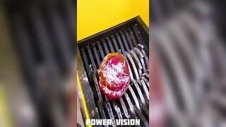 Shredding Giant Lollipop