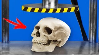 Experiment: Hydraulic Press Vs Skull