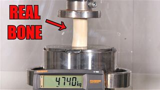 How Strong Is a Bone?? Hydraulic Press Test!