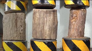 Big wood and 200 tons of hydraulic competition