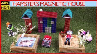 Hamster vs Hedgehog | Magnetic House | Top 10 Magnetics