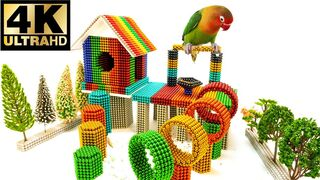 DIY - How To Build Parrot House with Magnetic Balls, Satisfaction 100%, Let's See I Do, BuPi Show 4k